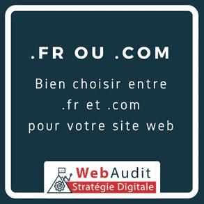 Blog Webaudit - choisir entre un .fr et un .com